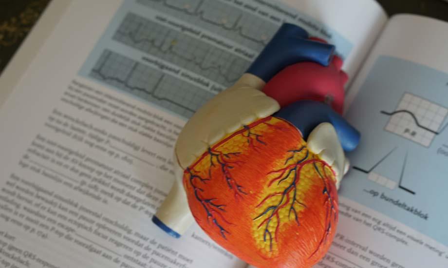 Heart Health Check